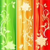 Set of floral backgrounds. Illustration Vector Illustration