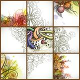 Set Of Floral Backgrounds. Royalty Free Stock Image
