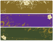 Set of floral banners with hibiscus Stock Image