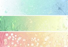 Set of floral banners. Three banners for your design. Dandelion, flowers, grass, butterflies in pastel colours. There are places for your text Stock Photo