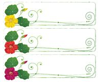Set of floral banners Stock Illustration