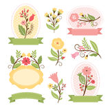 Set of floral bouquets and frames Royalty Free Stock Images