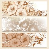 Set of floral brochures in classic  style with flowers Stock Photography