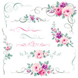 Set of floral calligraphic elements. Ornament with roses for greeting card decorations Royalty Free Stock Photo