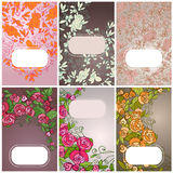 Set of floral card Royalty Free Stock Photo