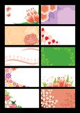 Set floral card Stock Images
