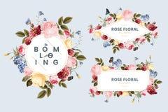 Set of floral card illustration vector illustration