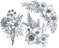 Set of Floral compositions. Bouquets with flowers and plants. Set of Floral compositions. Bouquets with hand drawn flowers and plants. Monochrome vector Royalty Free Stock Image