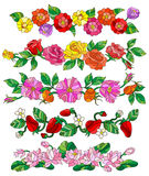 Set of floral compositions in the stained glass style on a white background Stock Photos
