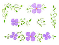Set of Floral Decor Elements as Patterns. Watercolor Hand Drawn and Painted, Isolated on White Stock Photography