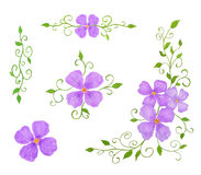 Set of Floral Decor Elements as Patterns. Watercolor Hand Drawn and Painted, Isolated on White Royalty Free Stock Photography