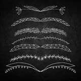 Set of Floral decorations. Set of Floral  decorations. Contains seven different symmetrical elements. Background - chalkboard Royalty Free Stock Photo