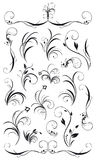 Set of floral decorations and garlands Royalty Free Stock Image