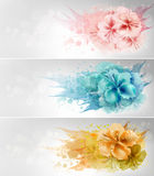 Set Of Floral Design Royalty Free Stock Photography