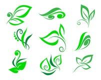 Set floral design element.Vector illustration . Royalty Free Stock Image