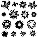 Set of floral design elements Stock Photos