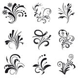 Set of floral design elements. Collection of floral design elements Stock Photography
