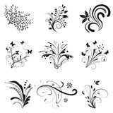 Set of floral design elements. Collection of floral design elements Royalty Free Stock Images