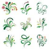 Set of floral design elements Stock Photos