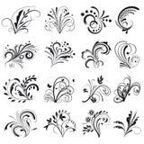 Set of floral design elements Stock Images