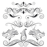 Set Of Floral Design Elements royalty free illustration