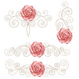 Set of floral design elements Royalty Free Stock Image