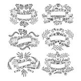 Set of floral design elements. drawn by hand. Hand drawn set vintage style vector design elements Stock Image