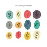 Set of floral design elements. Stock Photo