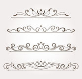 Set of floral design elements and page decoration Stock Photos