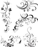 Set of floral ornaments isolated on white. Set of Floral Design Elements Swirl floral elements. Vector illustration Stock Illustration