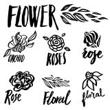 Set of floral design elements. Set of vector floral design elements, freehand drawing - flowers and leafs Royalty Free Stock Photography