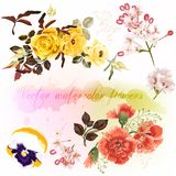 Set of floral designs in watercolor style with flowers Royalty Free Stock Photos