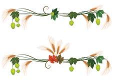 Set of floral dividers vector illustration
