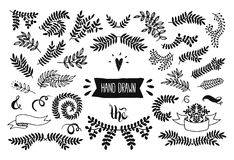 Set of Floral doodle collection Stock Image