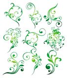 Set of floral elements Stock Photography