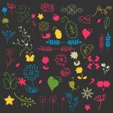 A set of floral elements Stock Photos