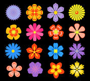 Set of floral elements and blossoms Stock Image