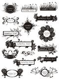 Set of floral elements and bunches Royalty Free Stock Images