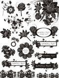 Set of floral elements and bunches Royalty Free Stock Photo