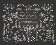 Set of floral elements on the chalkboard. Stock Images