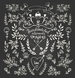 Set of floral elements on the chalkboard. Set of floral hand-drawn elements on the chalkboard Royalty Free Stock Photos