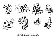 Set of floral elements for design Stock Images