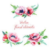 Set of floral elements for design. Royalty Free Stock Image