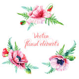 Set of floral elements for design. Royalty Free Stock Images