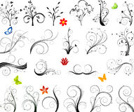 Set of floral elements vector royalty free illustration