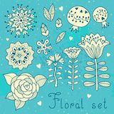 Set of floral elements  for your design. Royalty Free Stock Photo