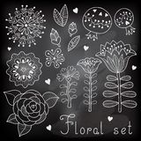 Set of floral elements  for your design. Royalty Free Stock Photography