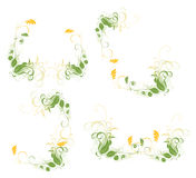 Set of  floral frame Royalty Free Stock Photo