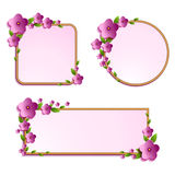 Set of floral frames Stock Photo