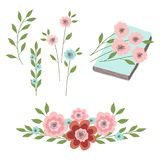 A set of floral ornaments, flowers with leaves on a book. Illustrations for design Royalty Free Stock Photos